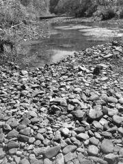 Creek bed bw