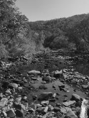Creek bed with mountain bw